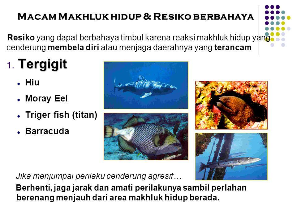 Macam Makhluk hidup & Resiko berbahaya