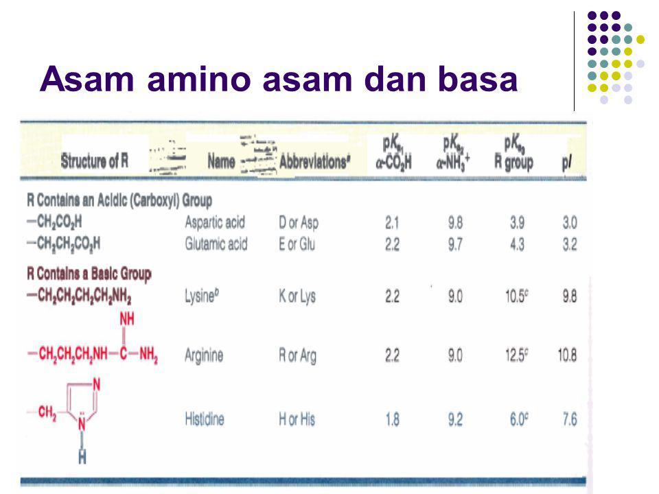 Asam amino asam dan basa