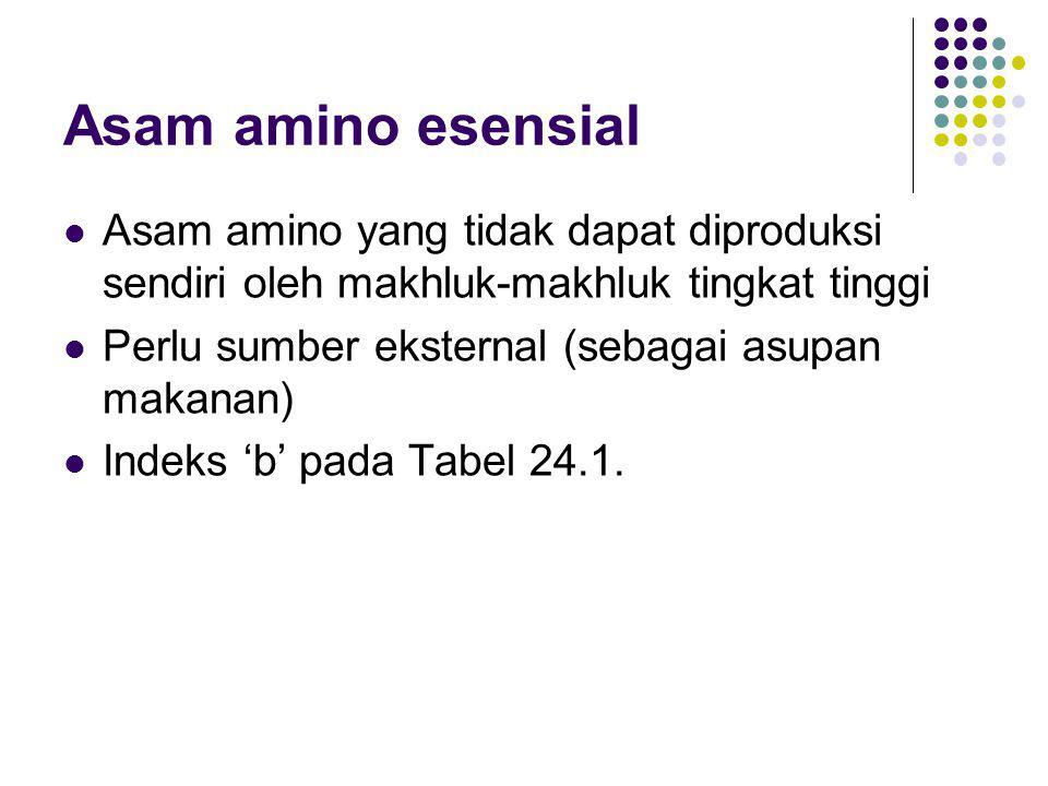 Asam amino esensial Asam amino yang tidak dapat diproduksi sendiri oleh makhluk-makhluk tingkat tinggi.