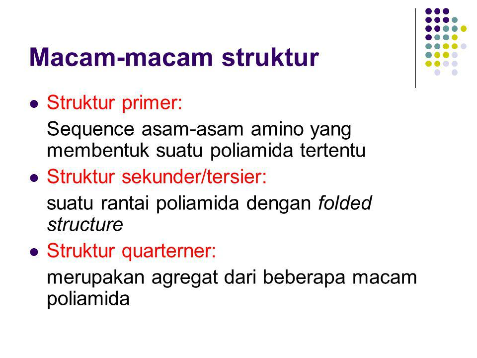 Macam-macam struktur Struktur primer: