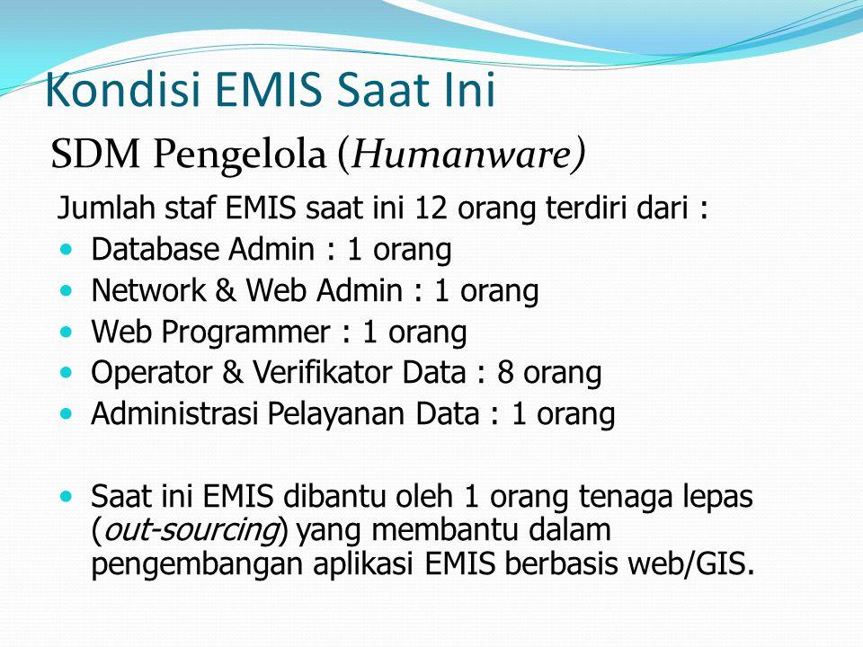 Kondisi EMIS Saat Ini SDM Pengelola (Humanware)