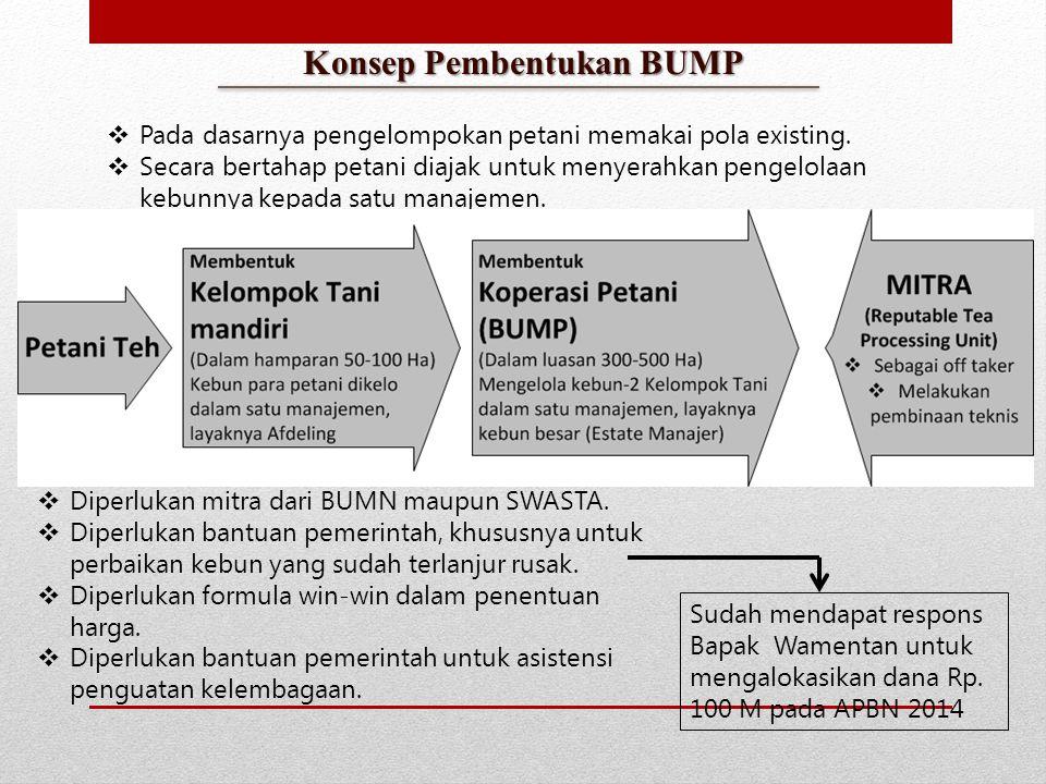 Konsep Pembentukan BUMP