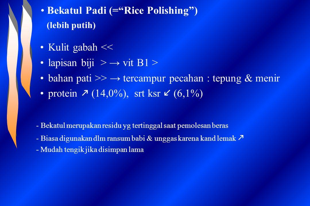 Bekatul Padi (= Rice Polishing ) (lebih putih)