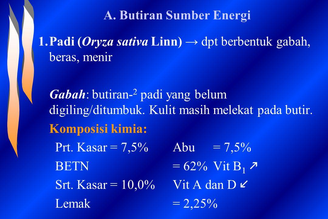 A. Butiran Sumber Energi