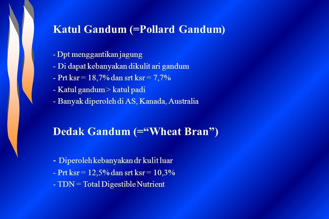 Katul Gandum (=Pollard Gandum)