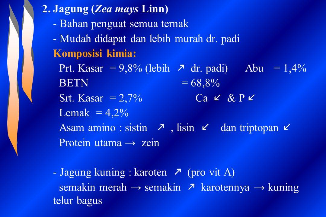 Jagung (Zea mays Linn) - Bahan penguat semua ternak. - Mudah didapat dan lebih murah dr. padi. Komposisi kimia: