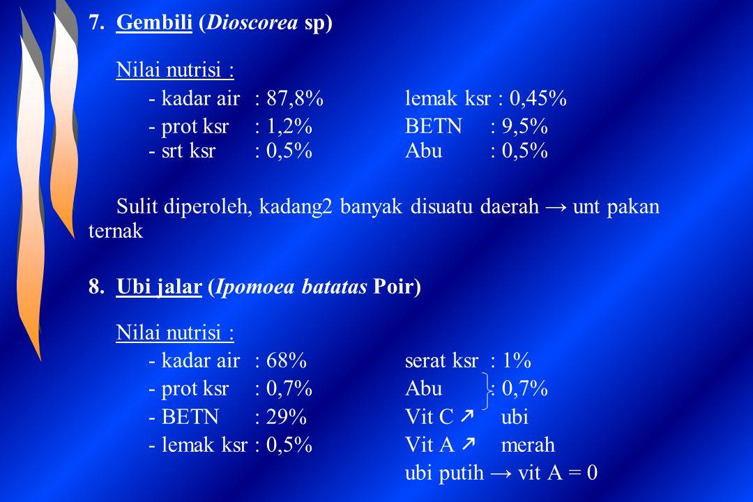 7. Gembili (Dioscorea sp)