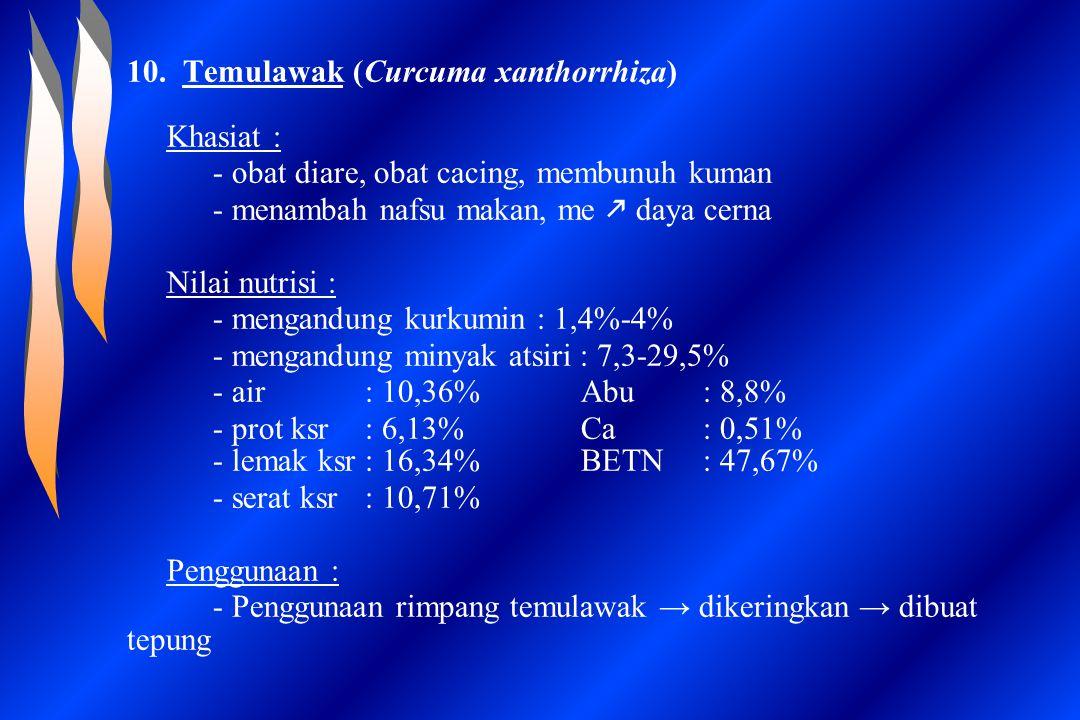 10. Temulawak (Curcuma xanthorrhiza)