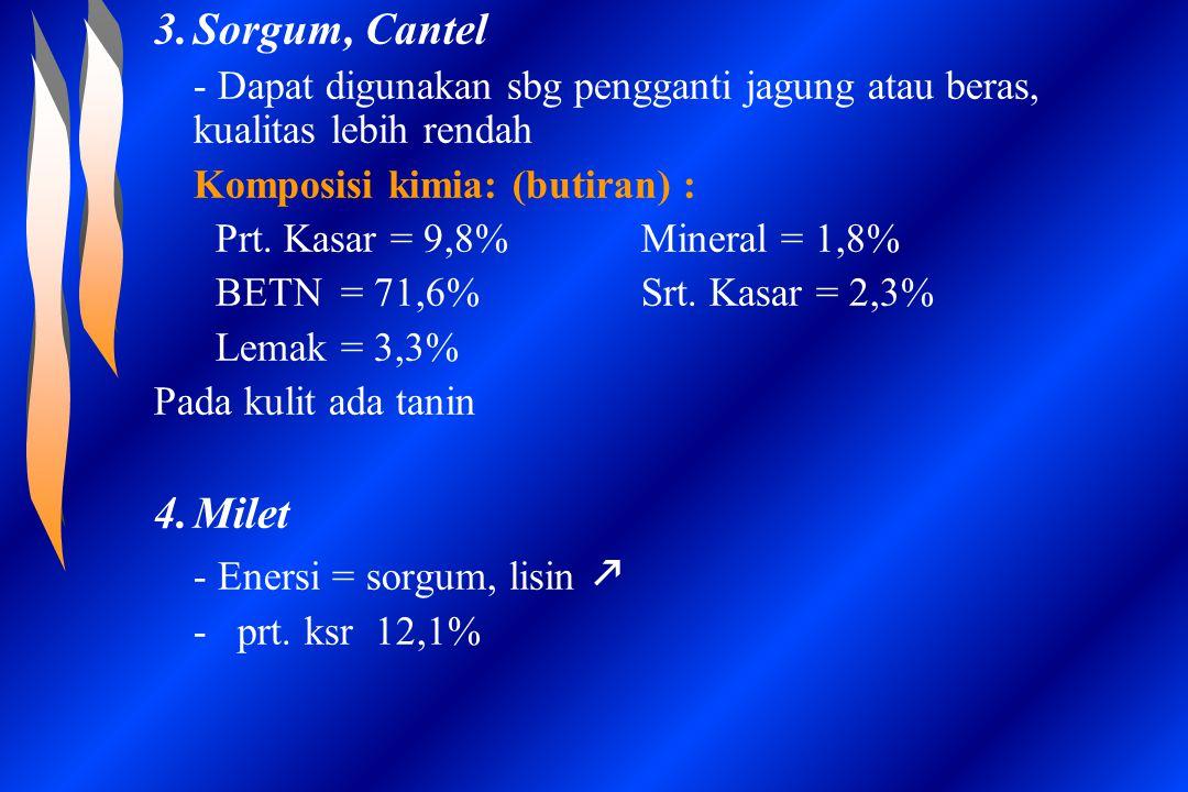 Sorgum, Cantel - Dapat digunakan sbg pengganti jagung atau beras, kualitas lebih rendah. Komposisi kimia: (butiran) :