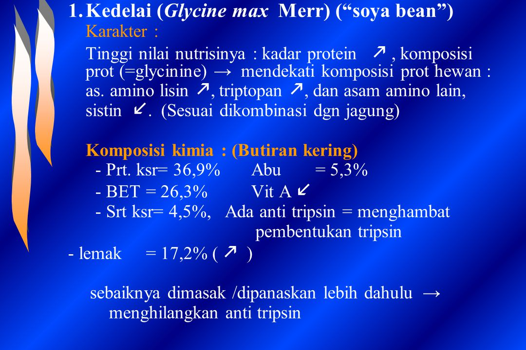 Kedelai (Glycine max Merr) ( soya bean )