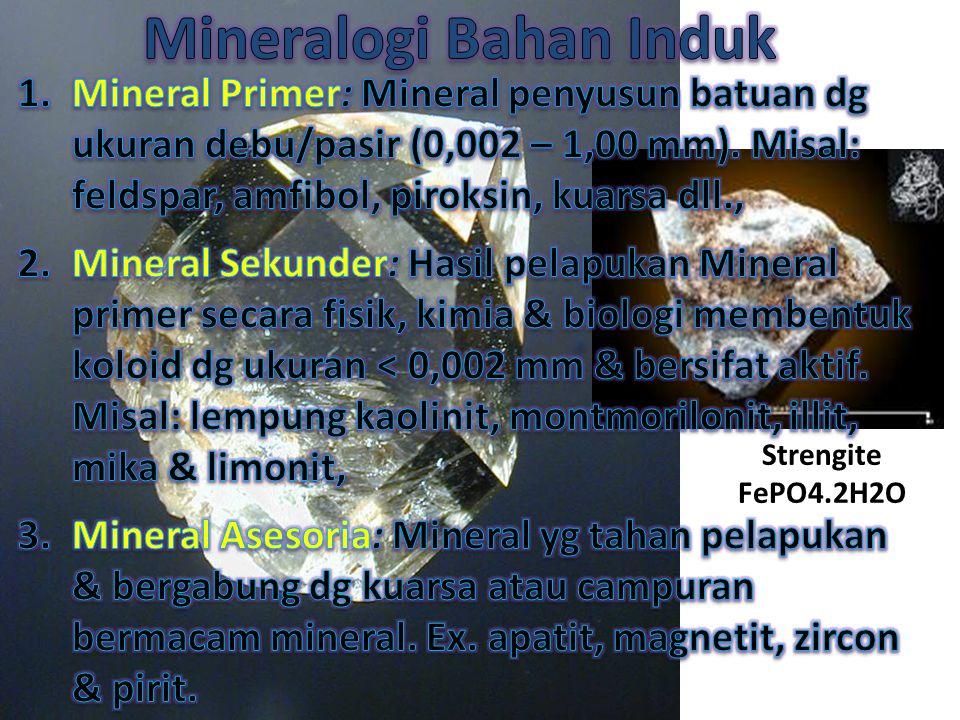 Mineralogi Bahan Induk