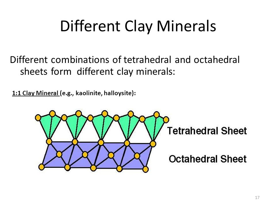 Different Clay Minerals
