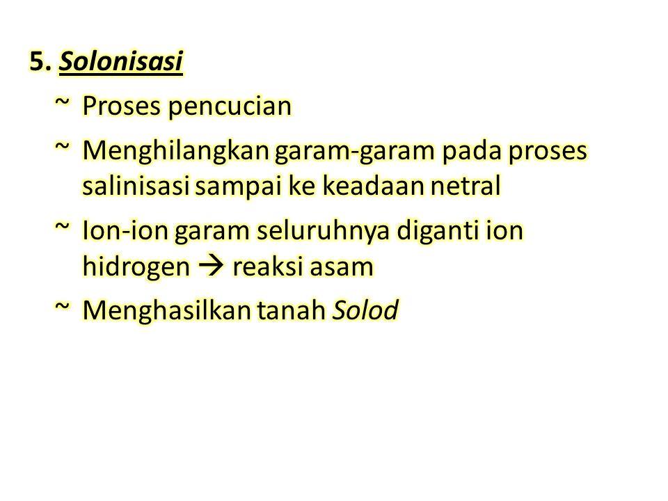5. Solonisasi ~ Proses pencucian. ~ Menghilangkan garam-garam pada proses salinisasi sampai ke keadaan netral.