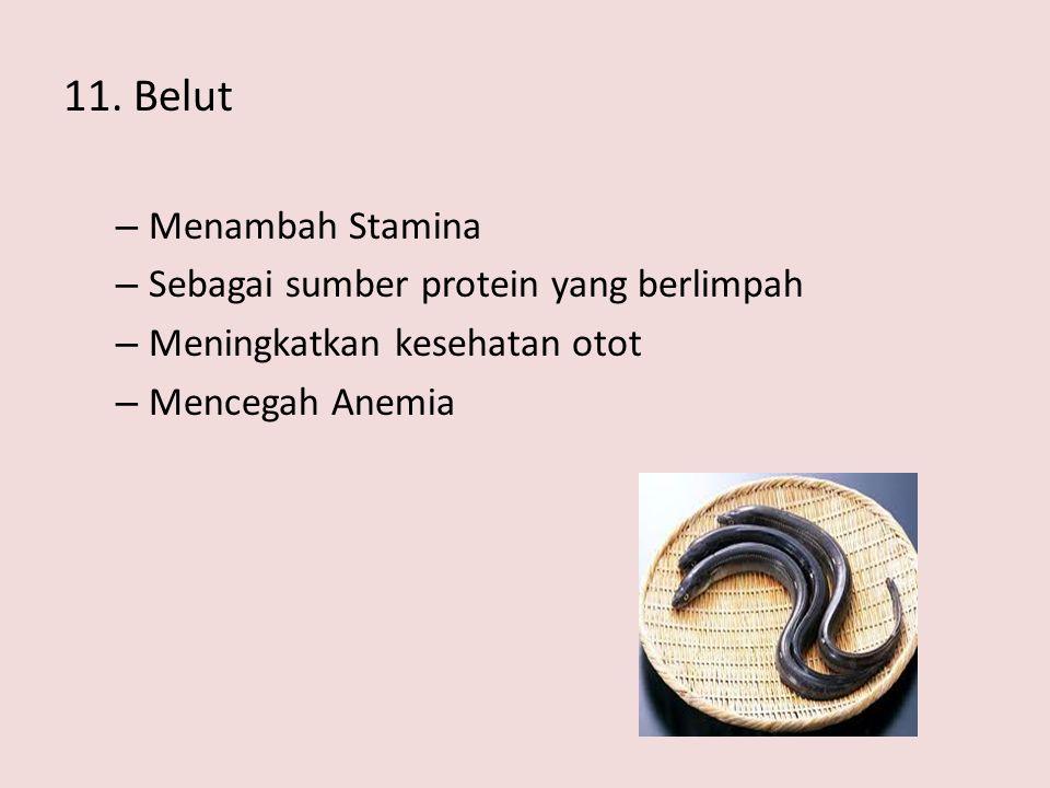 11. Belut Menambah Stamina Sebagai sumber protein yang berlimpah