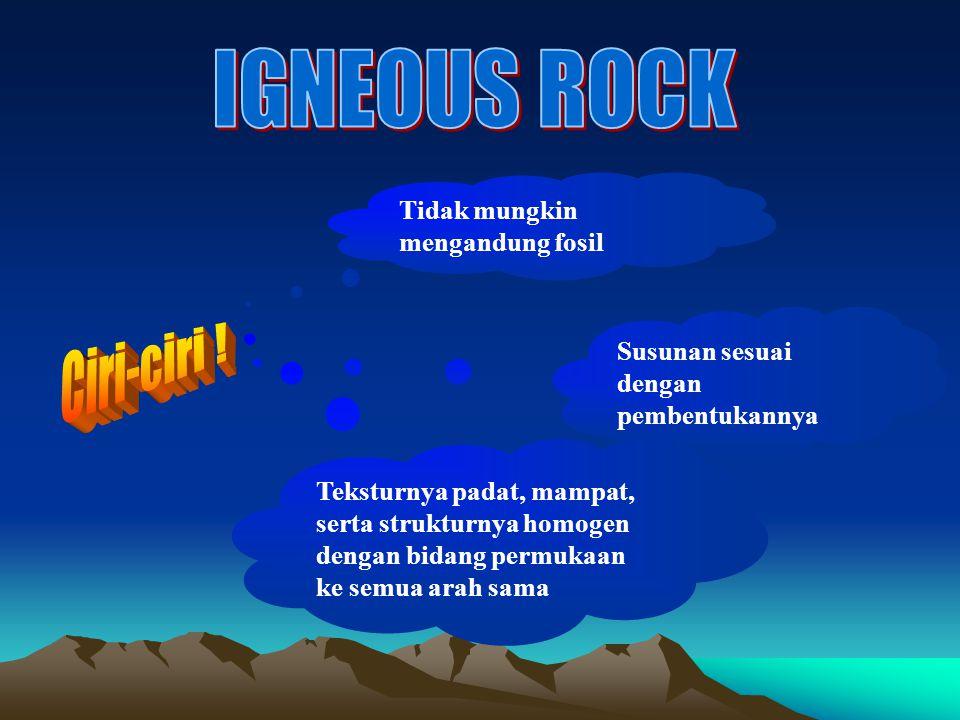 IGNEOUS ROCK Ciri-ciri ! Tidak mungkin mengandung fosil