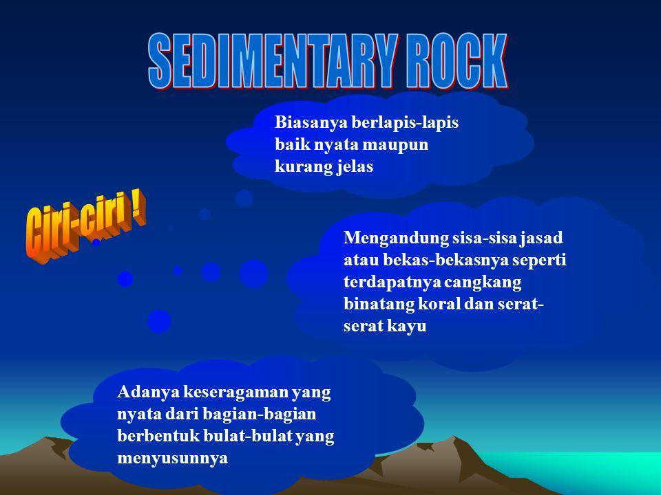 SEDIMENTARY ROCK Ciri-ciri !