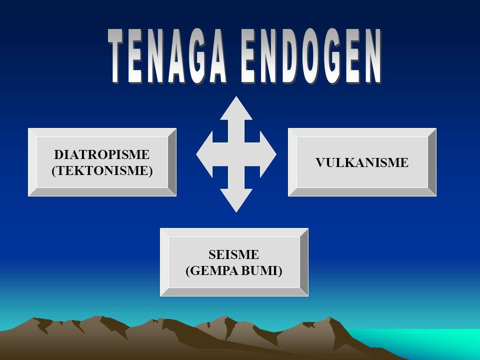 TENAGA ENDOGEN DIATROPISME (TEKTONISME) VULKANISME SEISME (GEMPA BUMI)