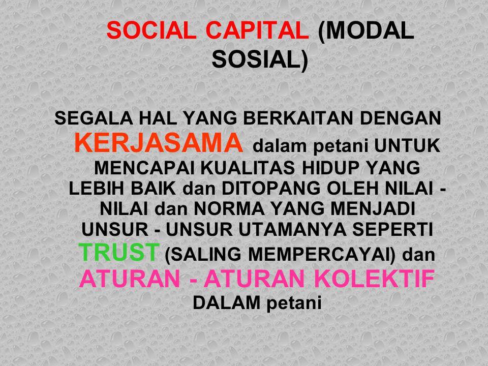 SOCIAL CAPITAL (MODAL SOSIAL)