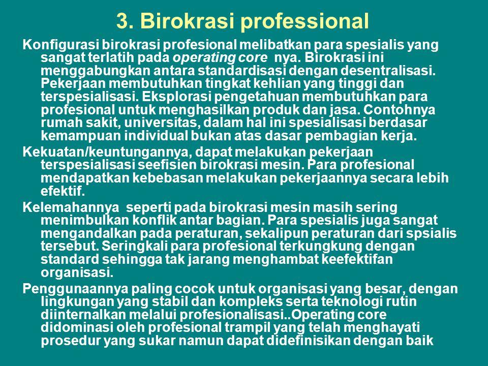 3. Birokrasi professional
