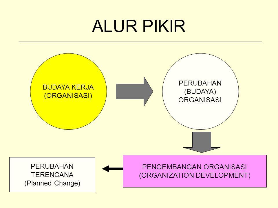 ALUR PIKIR PERUBAHAN BUDAYA KERJA (BUDAYA) (ORGANISASI) ORGANISASI