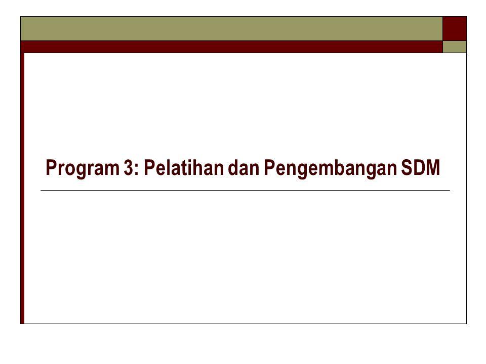 Program 3: Pelatihan dan Pengembangan SDM