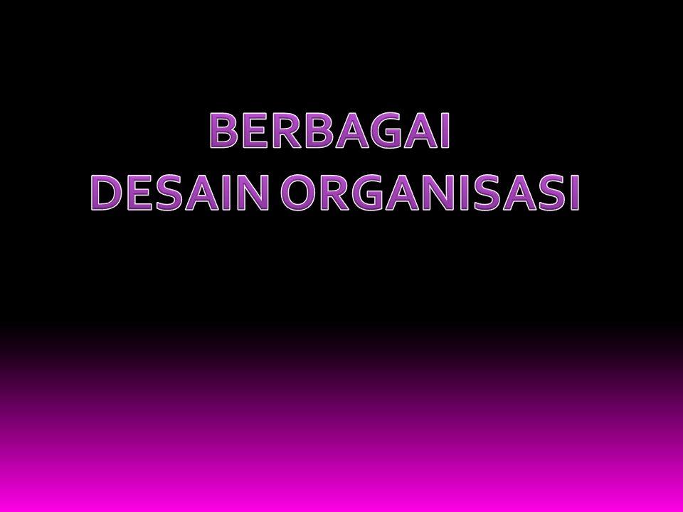 BERBAGAI DESAIN ORGANISASI