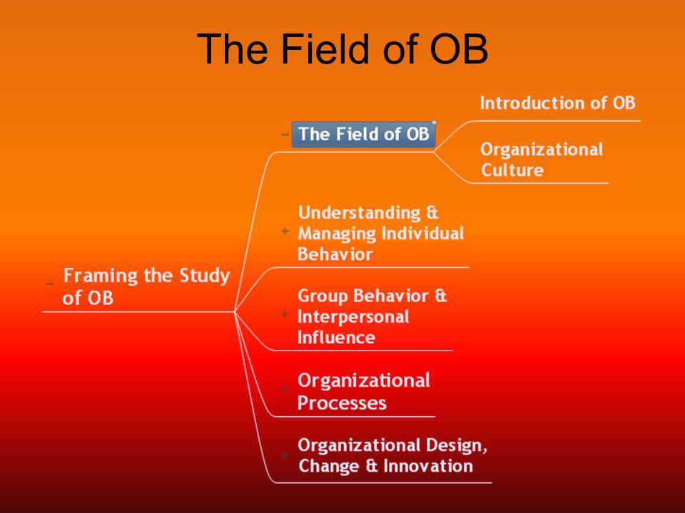The Field of OB