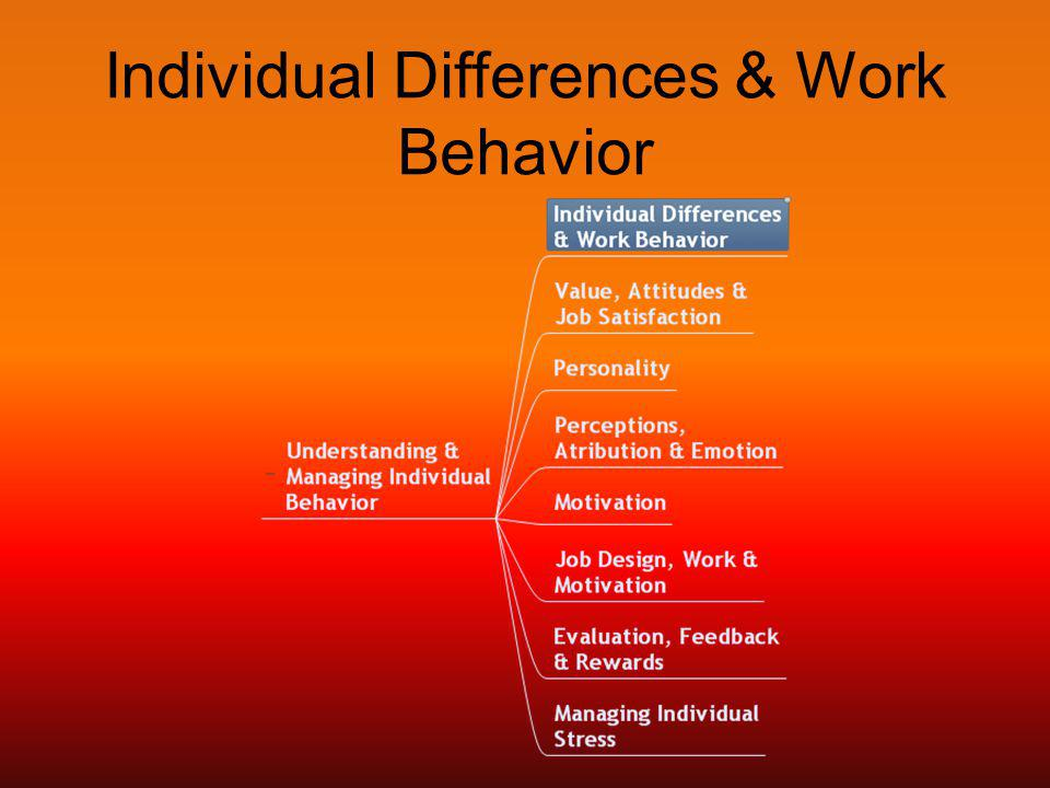 Individual Differences & Work Behavior