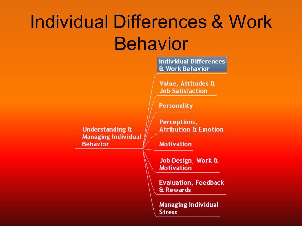 Individual Differences & Work Behavior