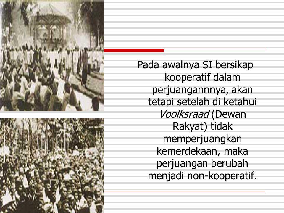 Pada awalnya SI bersikap kooperatif dalam perjuangannnya, akan tetapi setelah di ketahui Voolksraad (Dewan Rakyat) tidak memperjuangkan kemerdekaan, maka perjuangan berubah menjadi non-kooperatif.