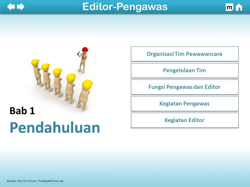 Organisasi Tim Pewawancara Fungsi Pengawas dan Editor