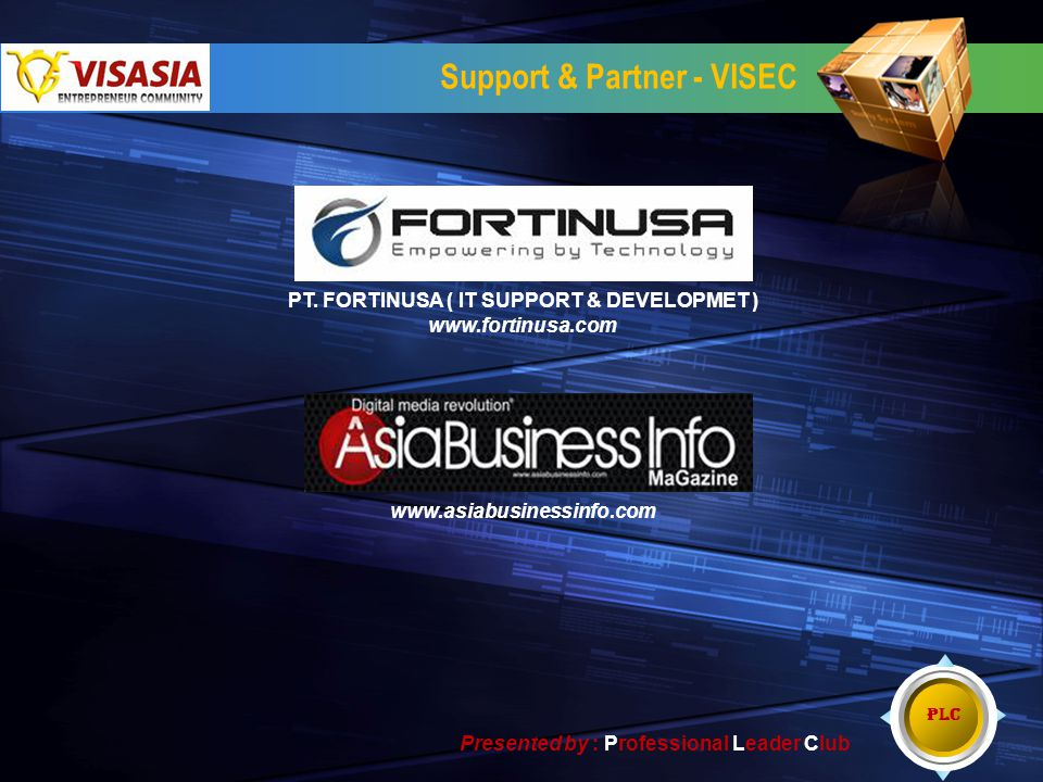 Support & Partner - VISEC