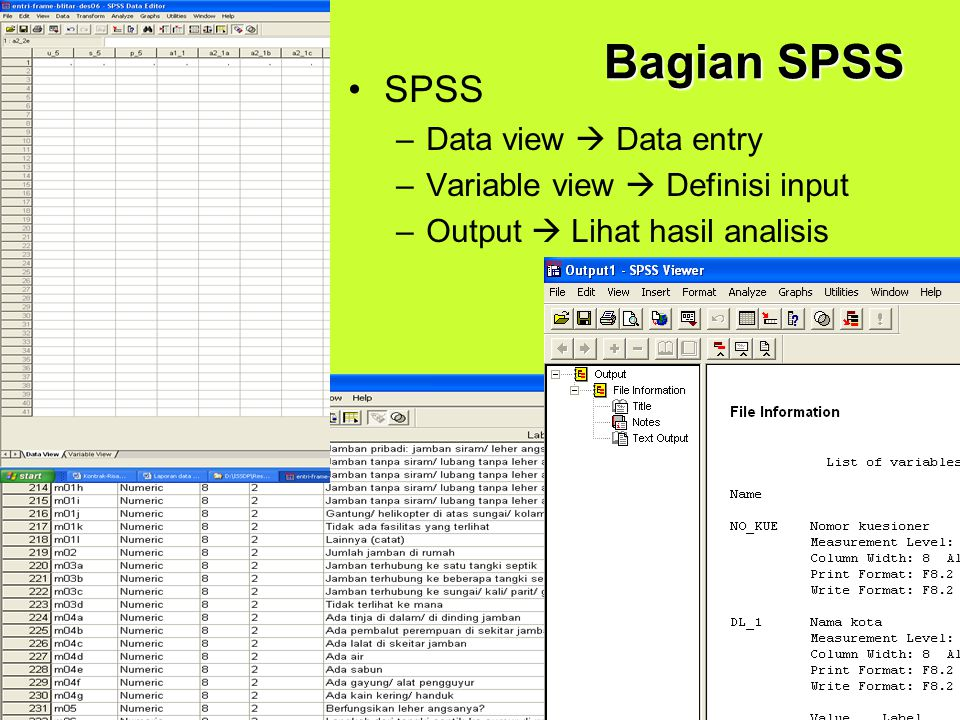 Bagian SPSS SPSS Data view  Data entry Variable view  Definisi input