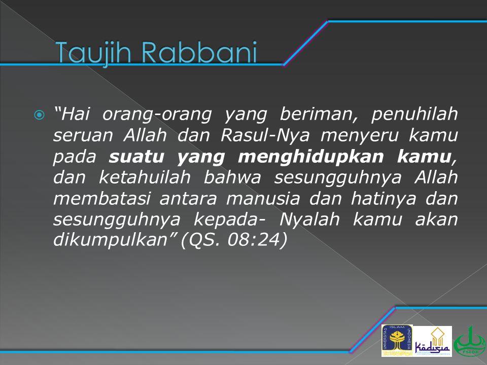 Taujih Rabbani