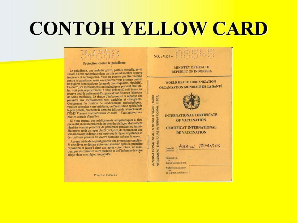 CONTOH YELLOW CARD