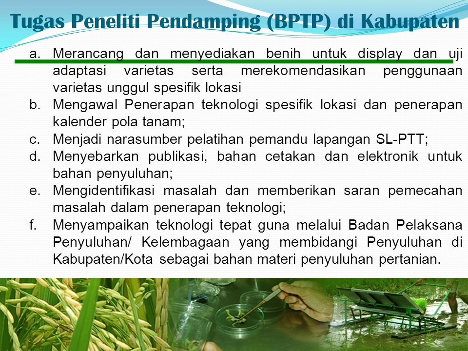 Tugas Peneliti Pendamping (BPTP) di Kabupaten
