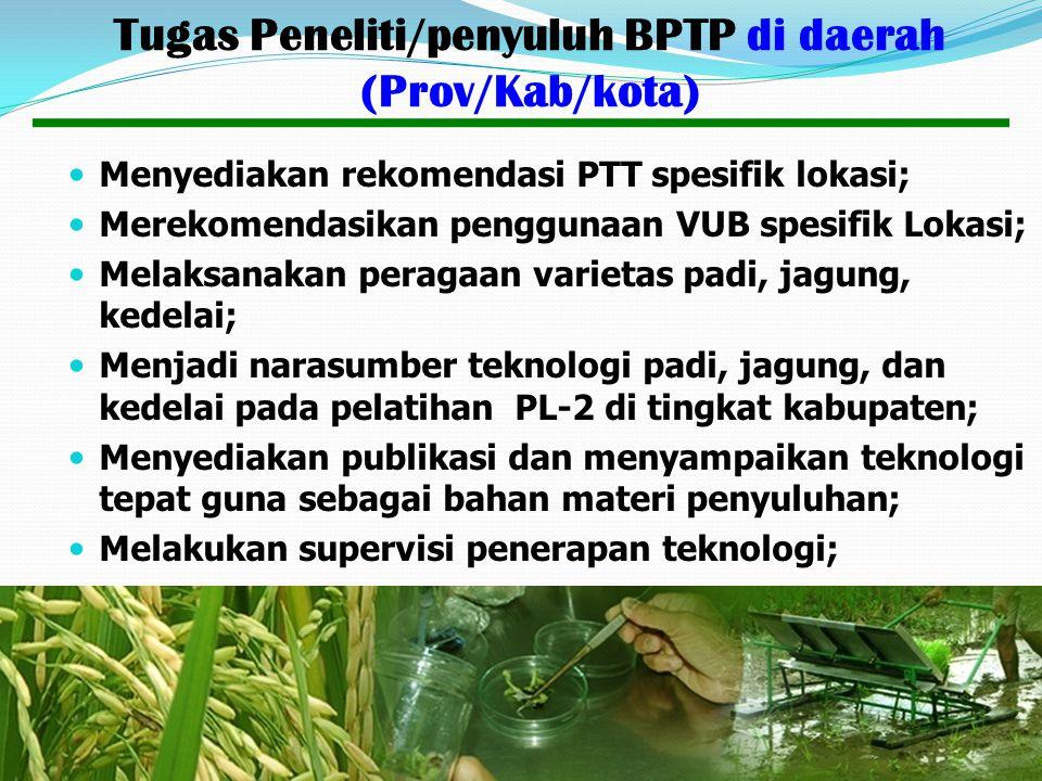 Tugas Peneliti/penyuluh BPTP di daerah (Prov/Kab/kota)