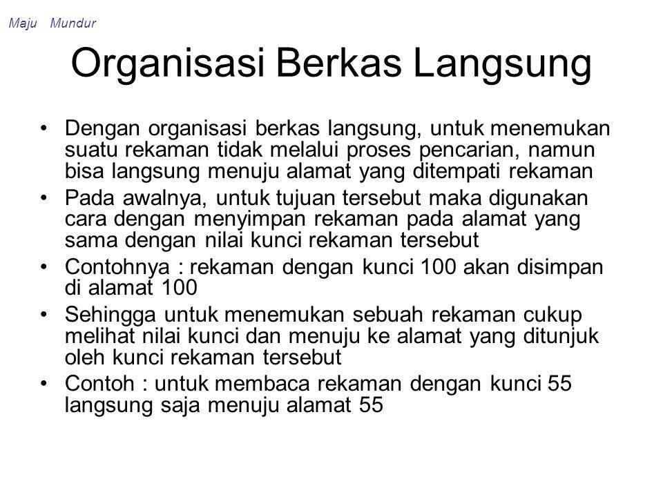 Organisasi Berkas Langsung