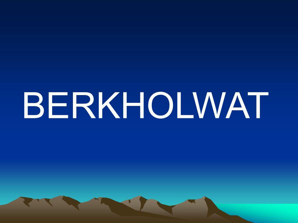 BERKHOLWAT