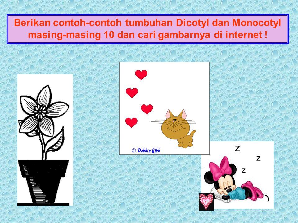 Berikan contoh-contoh tumbuhan Dicotyl dan Monocotyl masing-masing 10 dan cari gambarnya di internet !
