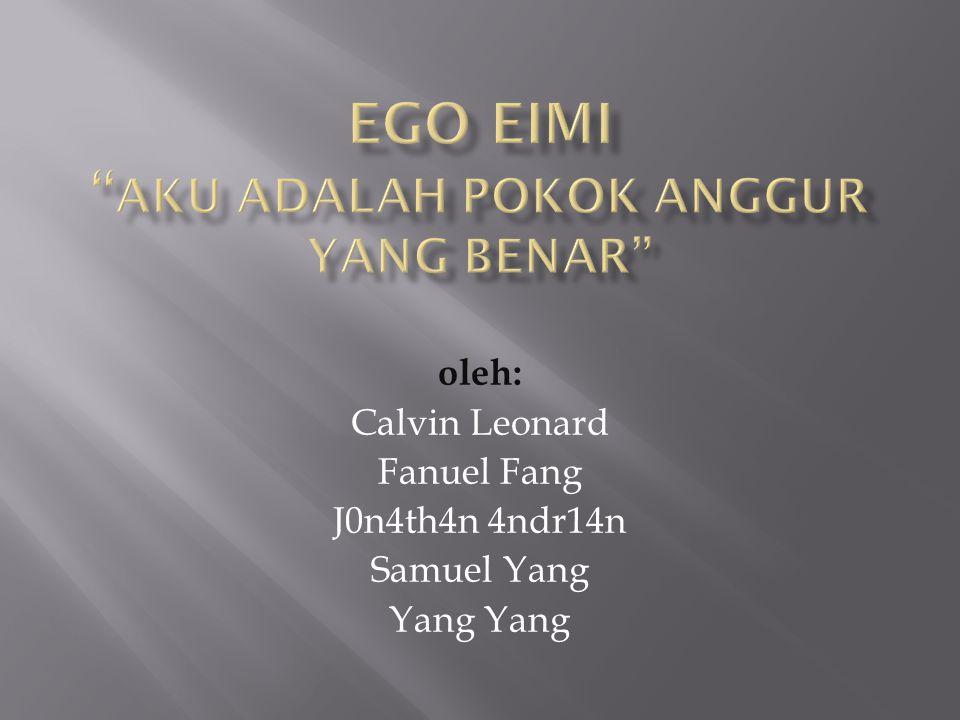 Ego Eimi Aku adalah Pokok Anggur yang benar
