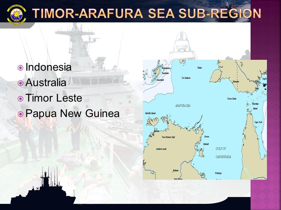 TIMOR-ARAFURA SEA SUB-REGION