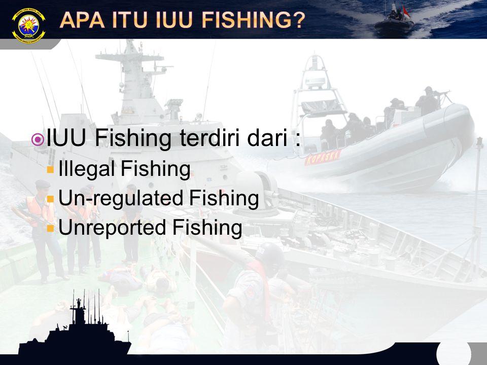 IUU Fishing terdiri dari :
