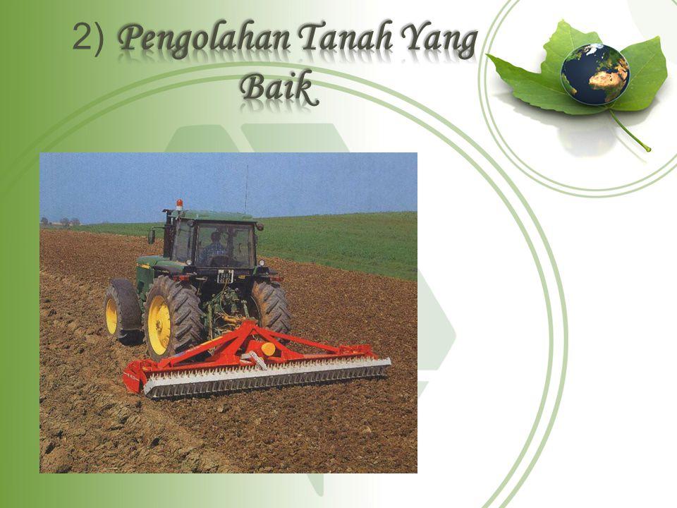 2) Pengolahan Tanah Yang Baik
