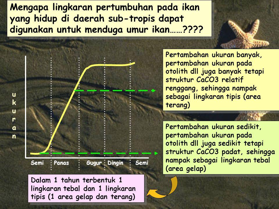Mengapa lingkaran pertumbuhan pada ikan yang hidup di daerah sub-tropis dapat digunakan untuk menduga umur ikan……