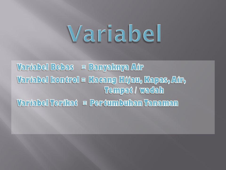 Variabel Variabel Bebas = Banyaknya Air Variabel kontrol = Kacang Hijau, Kapas, Air, Tempat / wadah Variabel Terikat = Pertumbuhan Tanaman