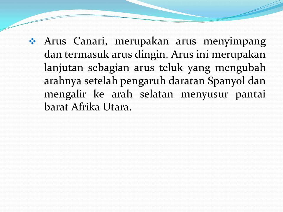 Arus Canari, merupakan arus menyimpang dan termasuk arus dingin