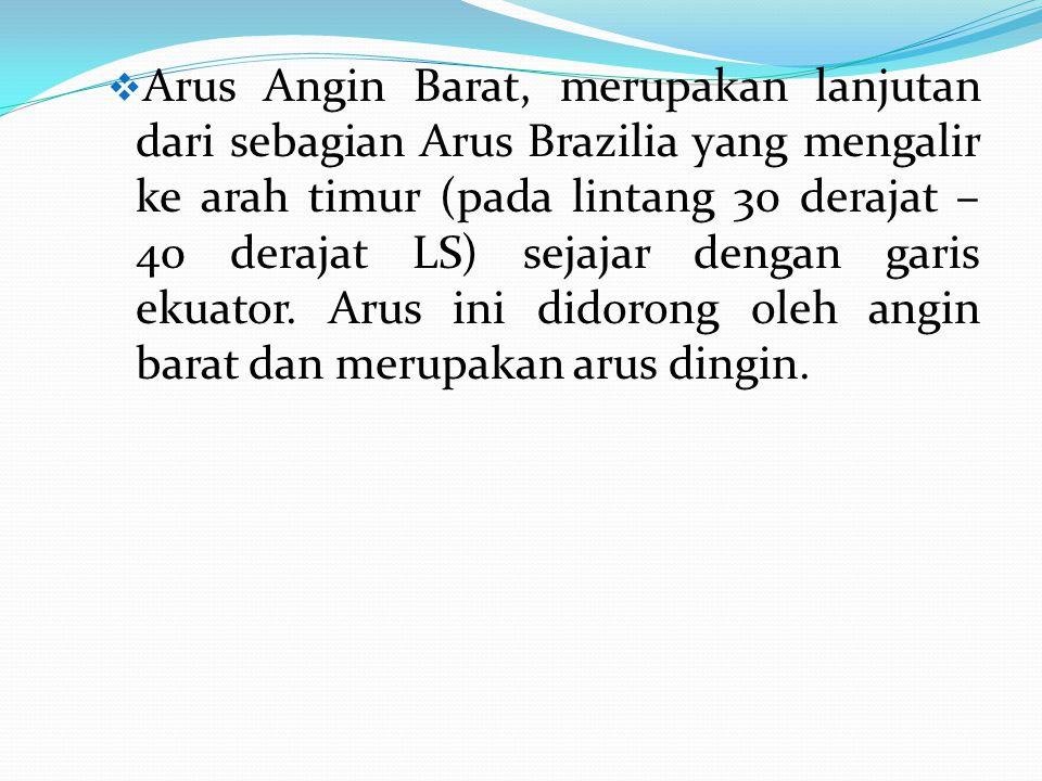 Arus Angin Barat, merupakan lanjutan dari sebagian Arus Brazilia yang mengalir ke arah timur (pada lintang 30 derajat – 40 derajat LS) sejajar dengan garis ekuator.