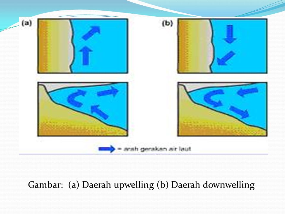 Gambar: (a) Daerah upwelling (b) Daerah downwelling
