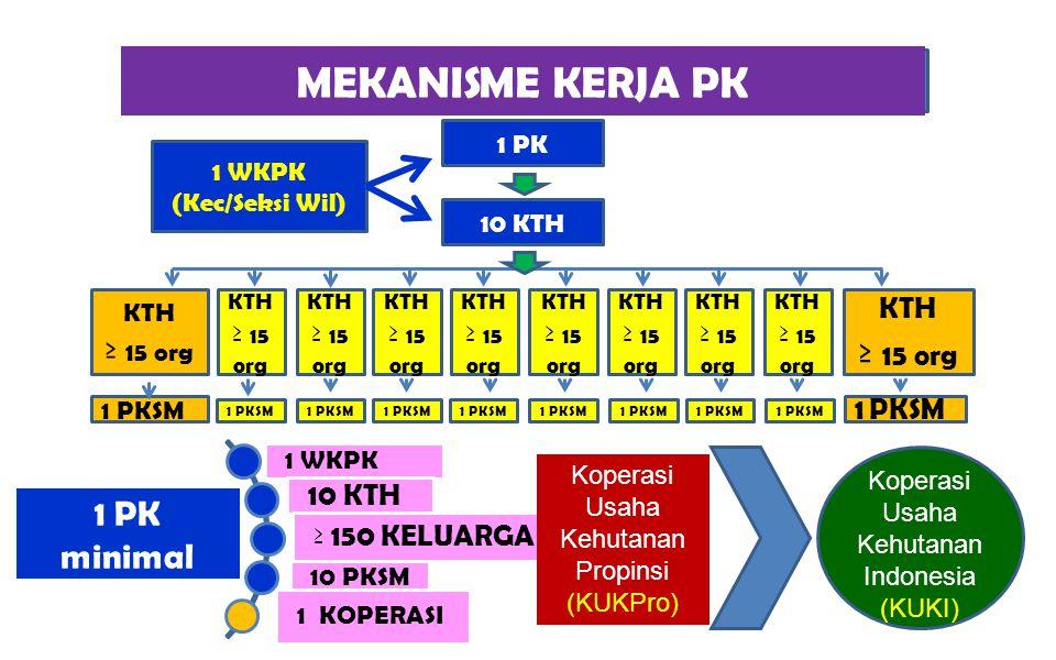 MEKANISME KERJA PK ≥ 15 org 1 PK minimal ≥ 150 KELUARGA 10 KTH 1 WKPK